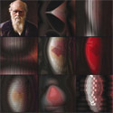 �Darwin�s Enduring Legacy� � Images of computational evolution of creativity research
